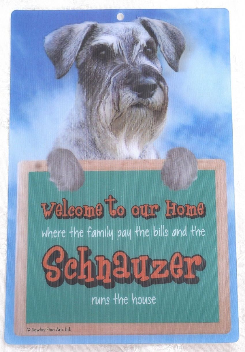 SCHNAUZER 3D WELCOME SIGN STUNNING EYE CATCHING 23CM X 15CM DURABLE DOG SIGN